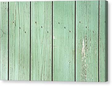 Green Wood Canvas Print by Tom Gowanlock