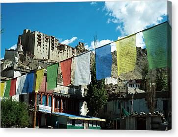 Tibetan Canvas Print - India, Ladakh, Leh, Prayer Flags by Anthony Asael