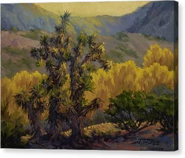 Joshua Trees And Cottonwoods Canvas Print by Jane Thorpe
