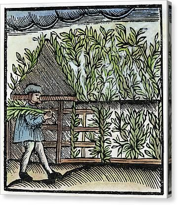 Jewish Holiday, 1663 Canvas Print by Granger