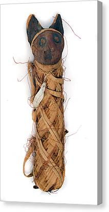 Mummified Cat Canvas Print by Natural History Museum, London