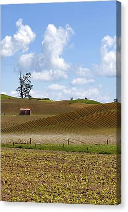 Old Barn  Canvas Print by Les Cunliffe