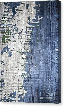 Old Painted Wood Abstract No.4 Canvas Print