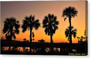 Canvas Print featuring the photograph 4 Palms In After Glow by Richard Zentner