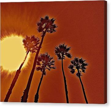 4 Palms N Sun Canvas Print