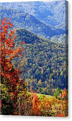Point Mountain Overlook Canvas Print by Thomas R Fletcher