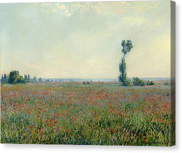 Poppy Field Canvas Print by Mountain Dreams