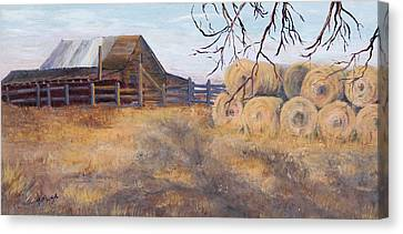 Ready For Winter Canvas Print by Bev Finger