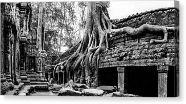 Angkor Canvas Print - Ta Prohm Ruin by Julian Cook