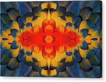 Scarlet Macaw Wing Covert Feathers Canvas Print