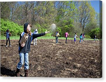 Schoolchildren Sowing Seeds Canvas Print by Jim West