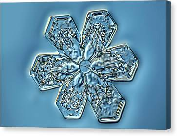 Snowflake Crystal Canvas Print