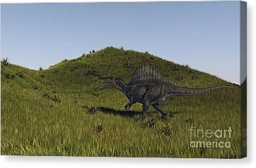 Spinosaurus Walking Across A Grassy Canvas Print by Kostyantyn Ivanyshen