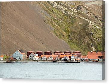 Stromness Whaling Station Canvas Print by Ashley Cooper