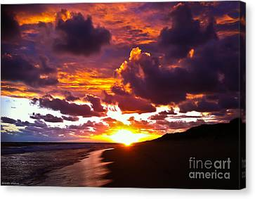 Sunset  Canvas Print by Alexander Whadcoat