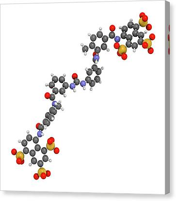 Suramin Sleeping Sickness Drug Molecule Canvas Print