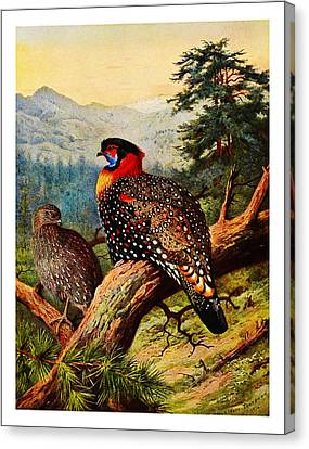 White Canvas Print - The Birds by Celestial Images