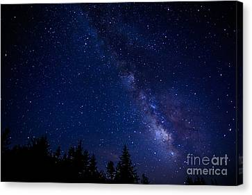 The Milky Way Over Cranberry Wilderness Canvas Print by Thomas R Fletcher