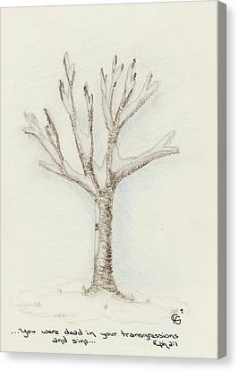 4 Trees-2nd Tree Winter Canvas Print