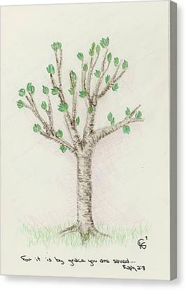 4 Trees-3rd Tree Spring Canvas Print