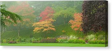 Garden Scene Canvas Print - Trees In A Garden, Butchart Gardens by Panoramic Images