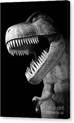 Tyrannosaurus Rex Dinosaur Canvas Print by Gaspar Avila