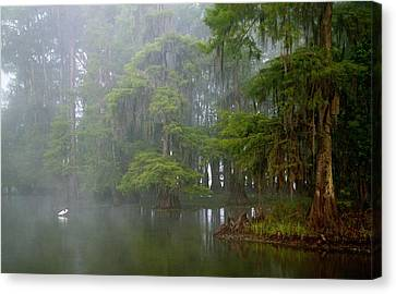 Usa, Louisiana, Lake Martin Canvas Print by Jaynes Gallery