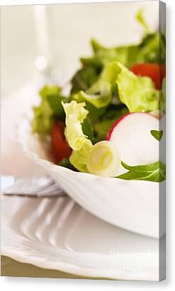 Vegetable Salad Canvas Print by Mythja  Photography