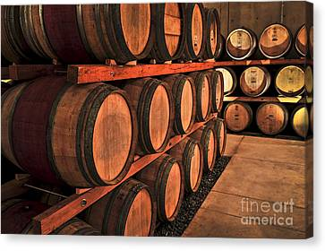 Cellar Canvas Print - Wine Barrels by Elena Elisseeva