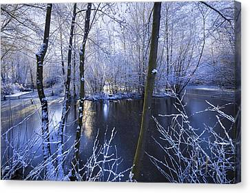 Winter Canvas Print by Svetlana Sewell