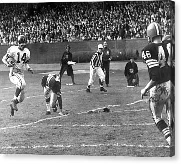 The Tiger Canvas Print - Y.a. Tittle by Retro Images Archive
