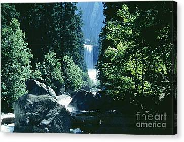 Yosemite Falls Canvas Print by Ted Pollard