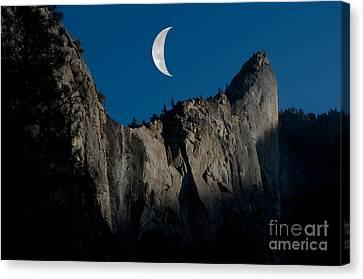 Yosemite National Park Canvas Print by Mark Newman