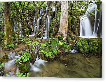 Flooding Canvas Print - The Plitvice Lakes In The National Park by Martin Zwick