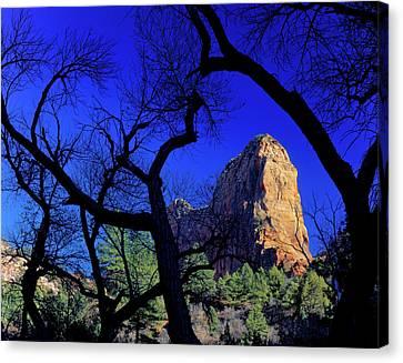 Zion National Park, Utah Canvas Print