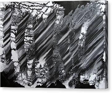 Untitled-8 Canvas Print by Tamal Sen Sharma