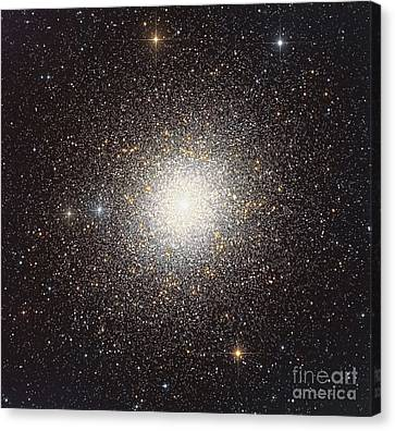 47 Tucanae, A Globular Cluster Located Canvas Print by Roberto Colombari