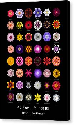 48 Flower Mandalas Canvas Print