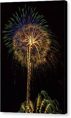 4th July #13 Canvas Print by Diana Powell