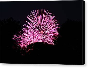 4th Of July Fireworks - 011326 Canvas Print by DC Photographer