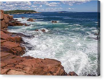 Acadia National Park Canvas Print by Trace Kittrell
