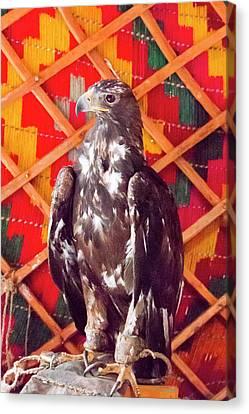 Asia, Western Mongolia, Bayan Olgii Canvas Print by Emily Wilson