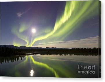Aurora Borealis And Full Moon Canvas Print by Joseph Bradley
