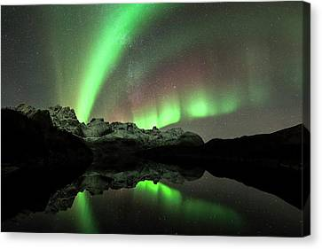 Snowy Night Night Canvas Print - Aurora Borealis by Tommy Eliassen