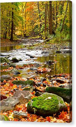 Marvelous View Canvas Print - Autumn Stream by Frozen in Time Fine Art Photography