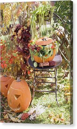 Autumnal Garden Decoration With Pumpkins Canvas Print