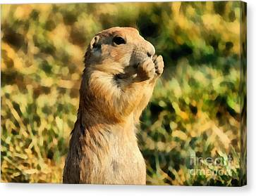 Prairie Dog Canvas Print - Black-tailed Prairie Dog by George Atsametakis