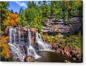 Blackwater Falls Canvas Print by Mary Almond