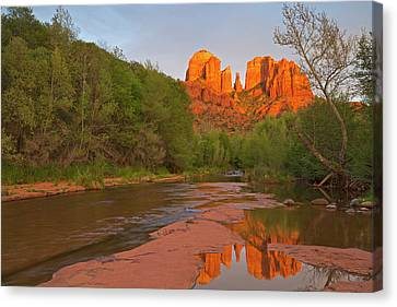 Cathedral Rocks Reflect Into Oak Creek Canvas Print by Chuck Haney