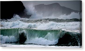 Clogher Waves Canvas Print by Barbara Walsh